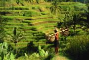 Сказочные пейзажи Борнео