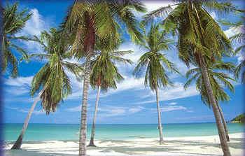 белоснежные пляжи Паттайи